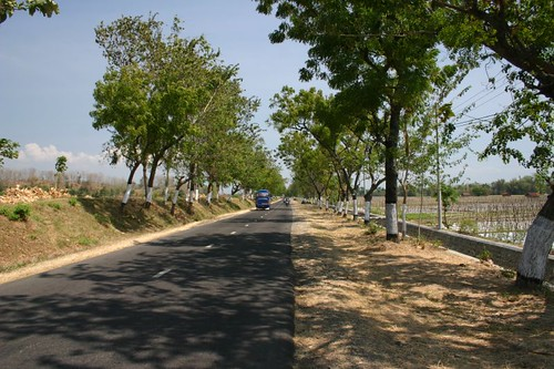 Nice straight cycling near Blitar...