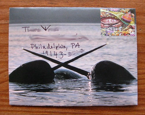 Crossed Tusks Narwhal envelope
