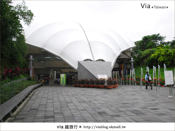 【花博一日遊】via遊花博(上)~從圓山園區開始玩花博!40