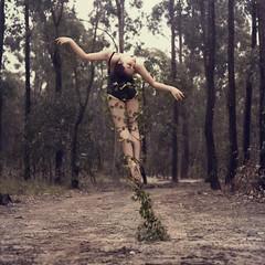 resilience (Ingrid Endel) Tags: trees ballet tree forest dance vines ballerina fineart dancer grace growth dirt strength elegant conceptual bushland resilience texturebylesbrumes