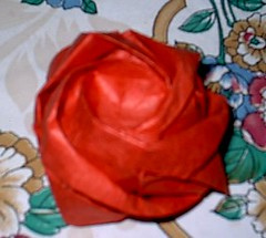 Rose (PhillipWest) Tags: origami paperfolding papiroflexia
