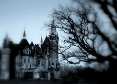 Castles & Dreams 31  House of Vampire 7 (Ewciak & Leto) Tags: dark sadness 500v20f sad darkness vampire gothic goth dream spooky fantasy horror nightmare legend canoneos350d groovy mystic hauntedplace 250v10f mywinners abigfave photology v401500 v101200 v76100 v501600 v601700 v701800 v201300 castlesdreams goldenphotographer v301400 v801900 scaryhouses excellentphotographerawards v9011000 v10001250 v12501500 v15001750 houseofvampire v17502000 v20002500
