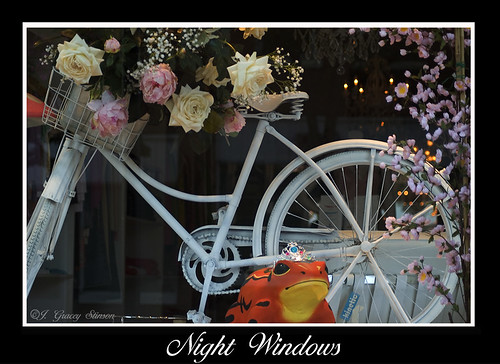 Night Windows - a pretty window display from a shop in downtown Orillia, taken at night