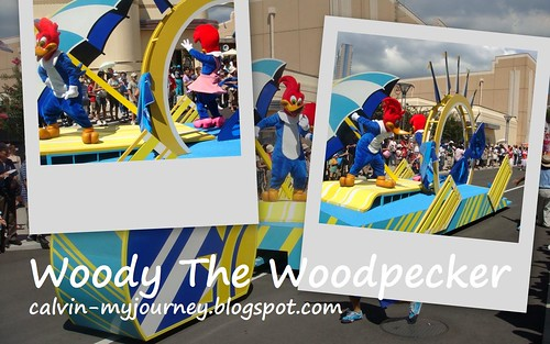 Woody The Woodpecker