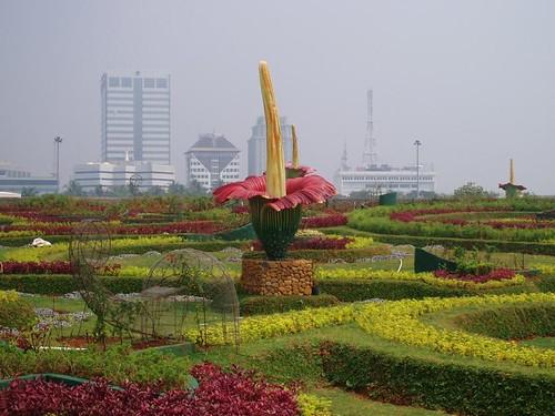 Jardín en Yakarta por Alimoni.