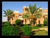 Heritage (TARIQ-M) Tags: tree heritage mosque palmtree riyadh saudiarabia canonefs1855 canon400d olddirriyah