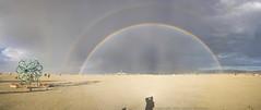 Double Rainbow (smashz) Tags: man rainbow playa double burningman blackrockcity burning brc doublerainbow burningman2007 bm07 burningman07 burningmanpanorama roygbiv2