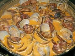 Almejas marinera-cubrimos con salsa
