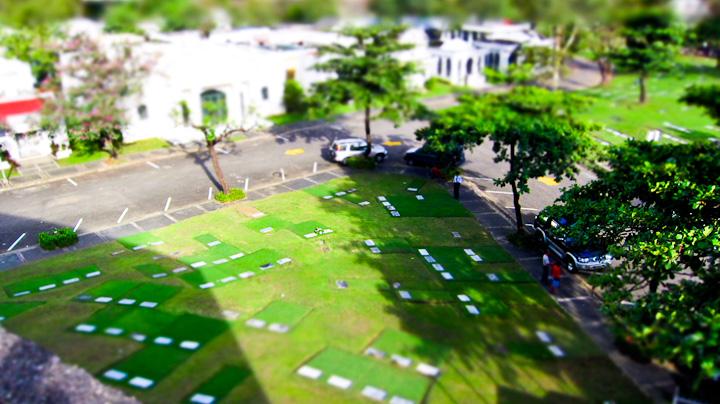 Cemetery2010-024