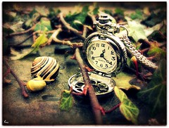 Cherish every moment and spend it wisely, because time waits for no-one. (Pink Flutterby   OFF) Tags: shells green texture nature leaves canon silver river leaf time watch fingers shell snail ivy powershot chain explore numbers moment pocket snails twigs frontpage pocketwatch cherish sx120is sx120