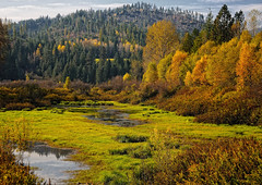 Autumn (Phil's Pixels) Tags: autumn fall idaho cataldo latourcreek