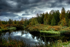 Wandering wild (Iskald) Tags: wild sky lake cold water clouds forest suomi finland lapland vegetation hdr lappi