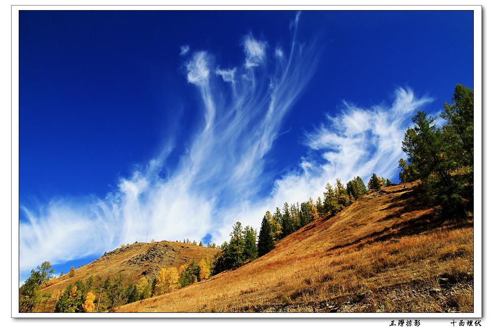 http://farm2.static.flickr.com/1333/5138772540_303e68a2cf_b.jpg