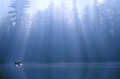 Morning Mist on the Dumoine II