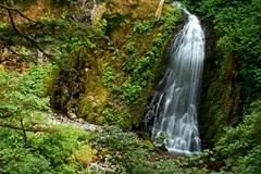 Upper McCord Creek Falls (Dan Sherman) Tags: oregon portland waterfall columbiariver waterfalls pdx mccord portlandoregon columbiarivergorge dreamjournal oregonwaterfalls columbiarivergorgenationalscenicarea mccordcreek uppermccordcreekfalls oregonwaterfall mccordcreekfalls columbiarivergorgewaterfall columbiarivergorgewaterfalls