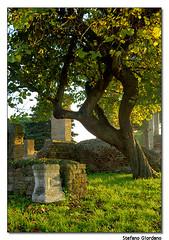 Ostia antica (Roma) (StefanoGiordano) Tags: italy rome roma ancient nikon ruins italia d70 roman romano antica ostia romans rovine necropoli