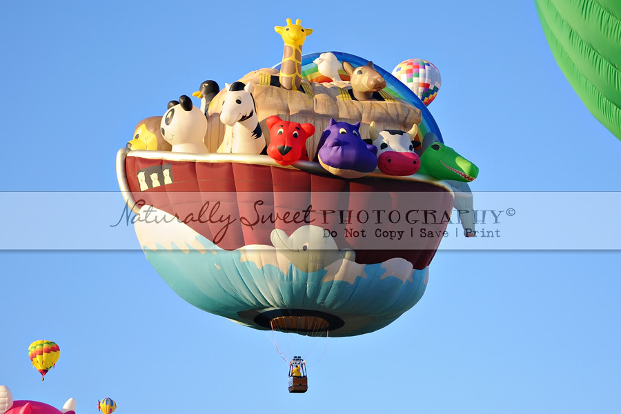 balloon fiesta 10-7 rs