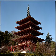 Five storied pagoda (HASSELBLAD 500C/M) (potopoto53age) Tags: tower 6x6 film japan zeiss mediumformat square temple 50mm tokyo hasselblad squareformat epson fujifilm hino reala vermilion f40 distagon 500cm hassel carlzeiss hasselblad500cm  fujifilmreala100 fivestoriedpagoda kongoji takahatafudoson takahatafudou abigfave epsongtx970 gtx970 carlzeissdistagon50mmf40 takahatafudosonkongoji toshizohijigata