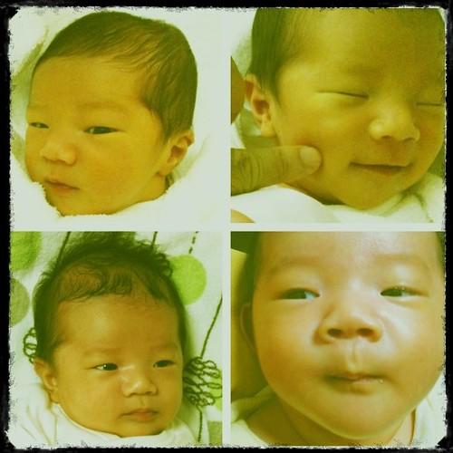 4 Tora-chan (my son)