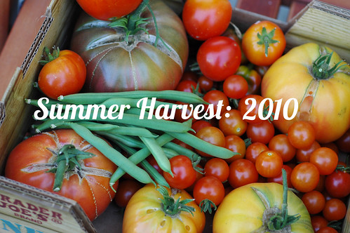 Summer2010 Garden