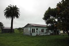 Old house, Scotsmans Valley, Tahuroa, Waikato, New Zealand (brian nz) Tags: old newzealand house abandoned farmhouse rural ruins decay cottage waikato derelict dilapidated oldandbeautiful oncewashome scotsmansvalley scotsmanvalley tahuroa