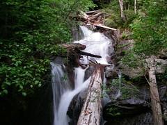 Mason Creek 2