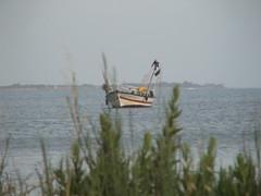 Petite barque de pêche dans la lagune