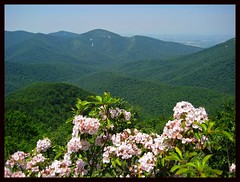 Shenandoah National Park - by Jim