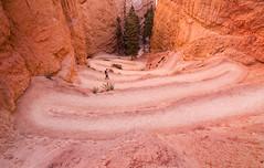Navajo Trail - Colour - by brentbat