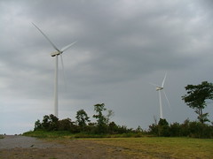 Buffalo Mountain Wind Turbines
