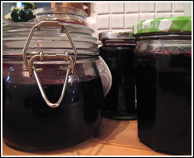 Blackberry Jelly copy