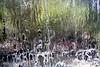 eyes behind the water! (matiya firoozfar) Tags: water canon waterfall view iran ایران esfahan isfahan آبشار mahallat آب markazi محلات eos400d matiya matiyafiroozfar ماتیا فیروزفر firoozfar مرکزی ماتیافیروزفر استانمرکزی 400ِd markaziprovince