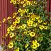 2007-09-09_11-42-00.jpg