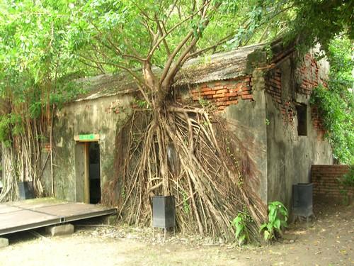 台南遊-安平樹屋