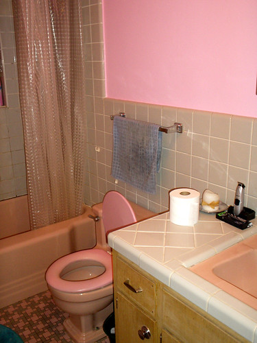 The Squishy-Seated Toilet (Pink)