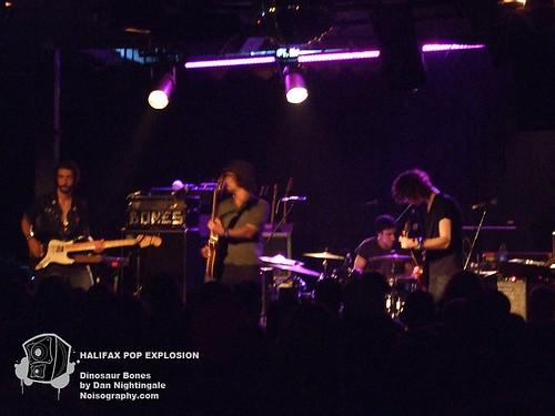 HPX 2010 - Dinosaur Bones 02