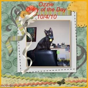 Ozzie - Diary of the Day - 10-4-2010