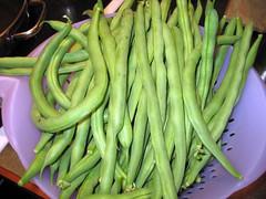 green_beans_7_2007