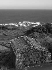 Manhenha (Carlos_Fontes) Tags: bw portugal pb pico adega azores aores manhenha