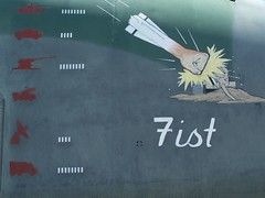 20070801 Fist