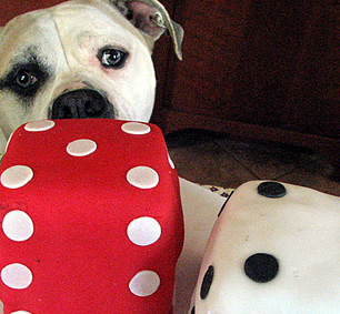 Layla Says Watch Out: The Dice Are Loaded!