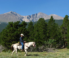 Wrangler in the Rockies (Sandra Leidholdt) Tags: horse usa naturaleza mountains america cheval us colorado unitedstates scenic explore riding american rockymountains rider cavalli horseback chevaux trailride wrangler amricain explored sandraleidholdt leidholdt sandyleidholdt