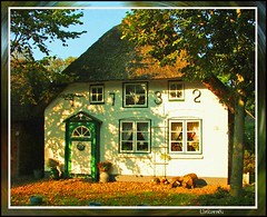 (91) Nordfriesland / Insel Fhr / sunshine (unicorn 81) Tags: old roof house color building window architecture germany island deutschland countryside colorful europa europe dorf village cottage eu haus historic northsea thatch thatchedroof nordsee germania schleswigholstein thatched countryhouse fhr cottages norddeutschland thatchedcottage mapgermany reetdach northerngermany nordfriesland thatchedhouse niemcy saksa views100 reetdachhaus thatchedroofcottages ruralhouses architekturdeutschland unicorn81 hausmitreetdach allemeinefotosvon001500
