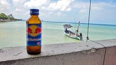 Red Bull Tastes Better From a Bottle - by kandyjaxx