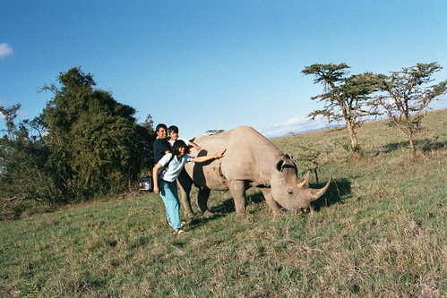 SW Family Touching Rhino