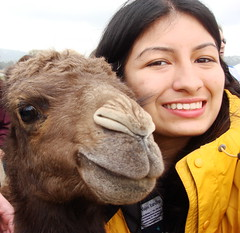 baby camel and me