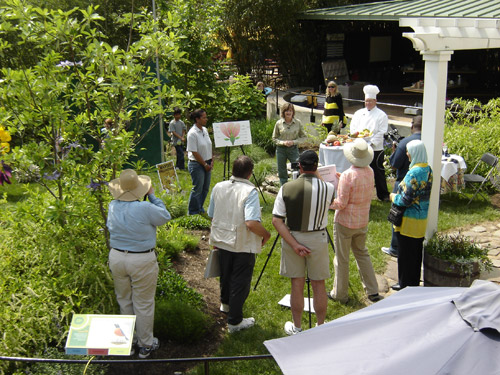 Production members and the on-air moderators and guests prepare for the kick-off of the five-segment live webcast of Pollinator LIVE from the Smithsonian's national Zoo May 12.