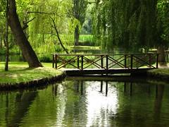 Da l a l (Il cantore) Tags: wood bridge lake reflection verde green water lago ponte acqua umbria legno riflesso fontidelclitunno 15challengeswinner canoniani