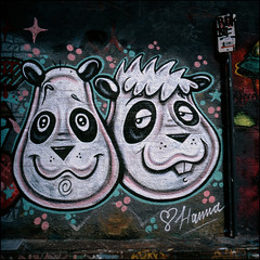 (Kenneth McNeil) Tags: street color art love 120 6x6 mediumformat square graffiti colorful panda fuji sydney may australia hasselblad velvia lane squareformat medium format 100 australien pandas colorexplosion fujivelvia carlzeiss fujivelvia100 justthetwoofus hasselblad500c planar80mm maylane carlzeissplanar80mmf28 kennethmcneil
