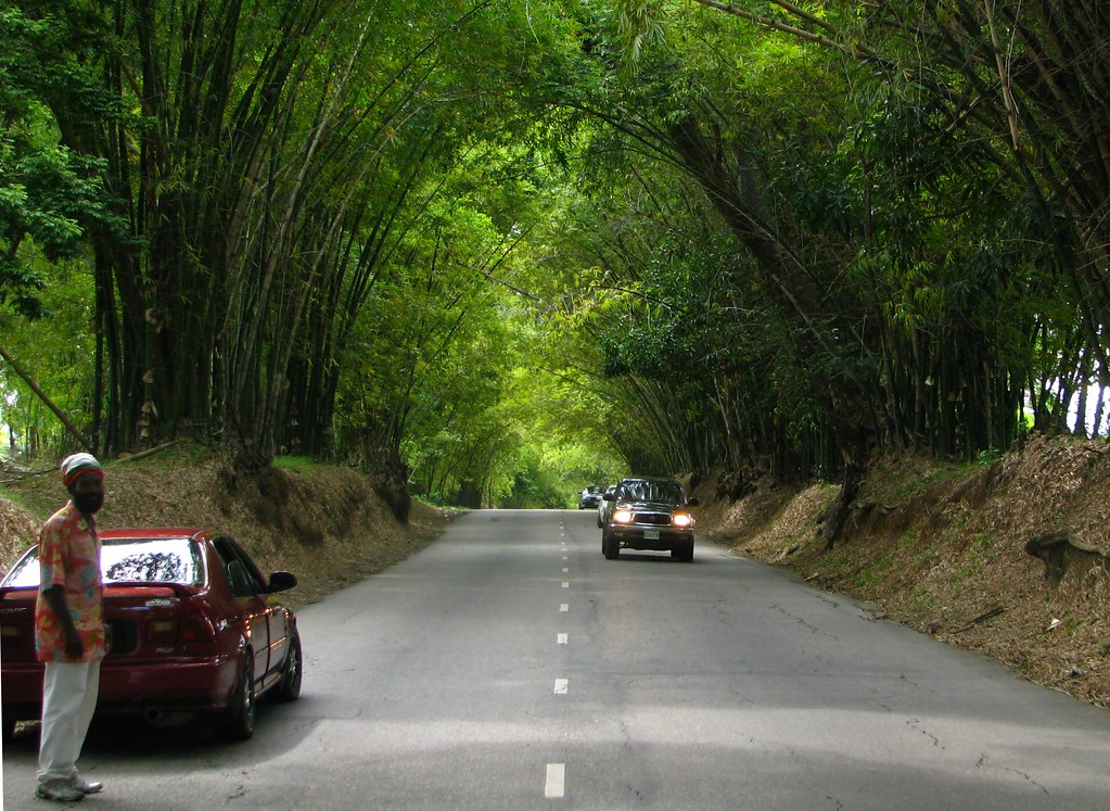 holland bamboo: community tourism with Honey and Angel on Jamaica's South Coast